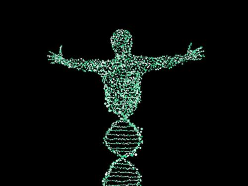 Uticaj navika na gene DNA DNK