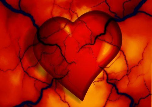 Slika: Folna kiselina_B12_anemija_kardiovaskularna_oboljenja