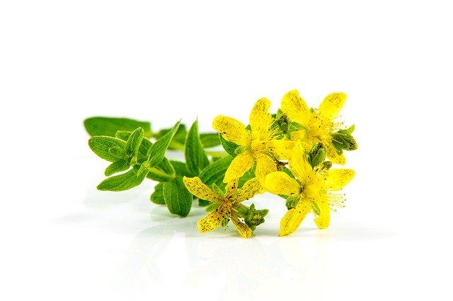 Anksioznost - kako pomoci prehranom i biljnim preparatima